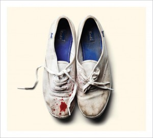 Sleigh Bells Reign of Terror cover